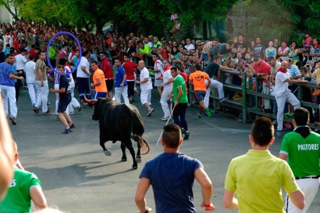Alexander Fiske-Harrison, circled, with the bull which killed a 66-year-old man this morning in Cuéllar, his blood still on its horn (Photo © Antonio Tanarro / El Norte de Castilla)